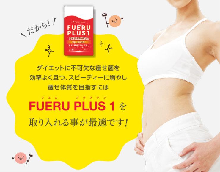 FUERUPLUS 1(フエル プラスワン)